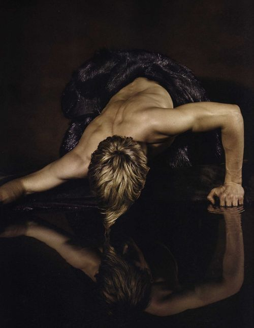 michael palmer narcissus